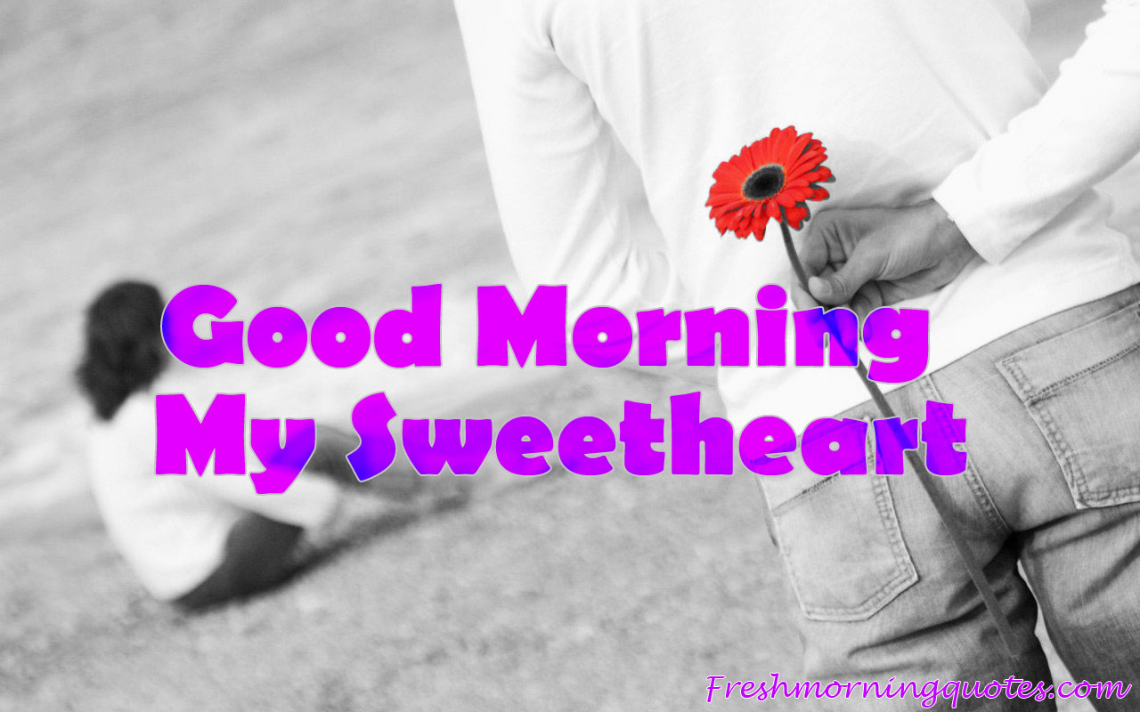 Good Morning My Love Images With Flowers Good Morning My Love Have A Beautiful Day 1280x800 Download Hd Wallpaper Wallpapertip