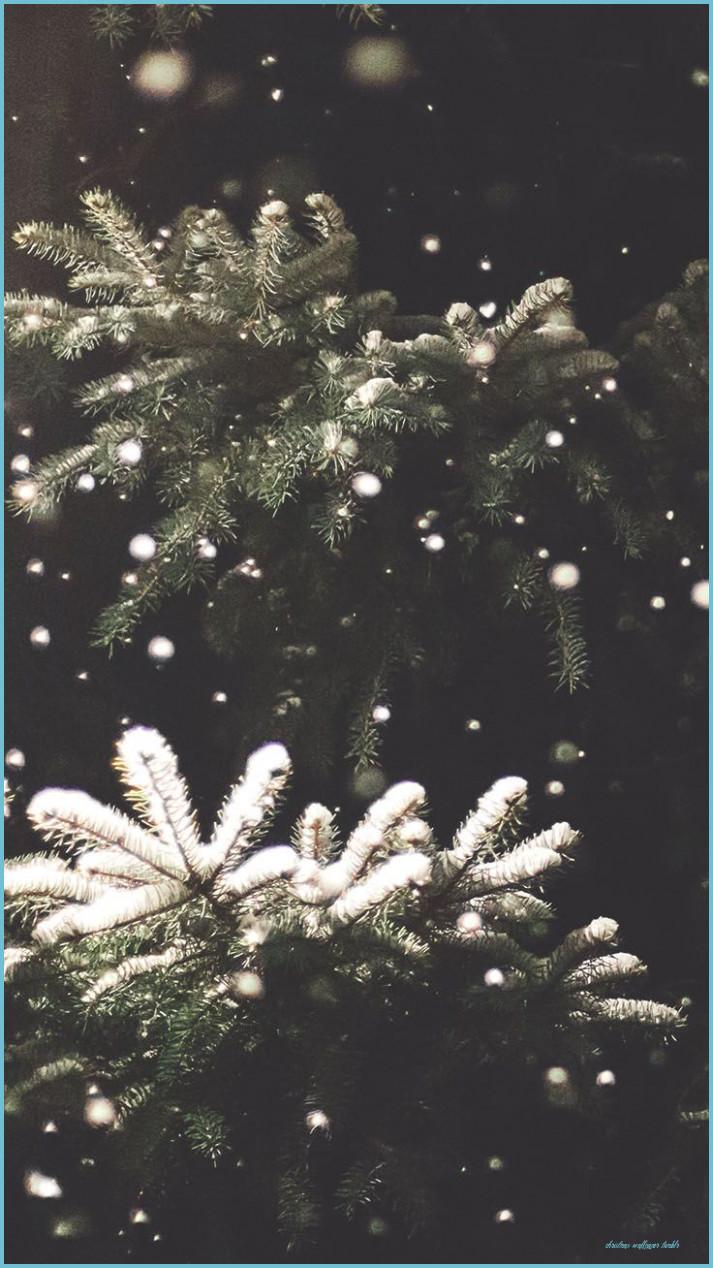 0 5705 winter wallpaper iphone tumblr december 2019 calendar background
