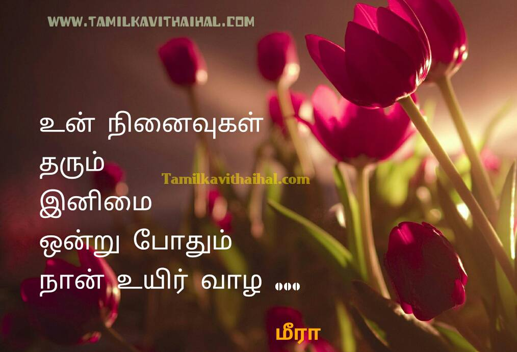 Whatsapp Dp In Tamil Love Kavithai 1014x691 Download Hd Wallpaper Wallpapertip