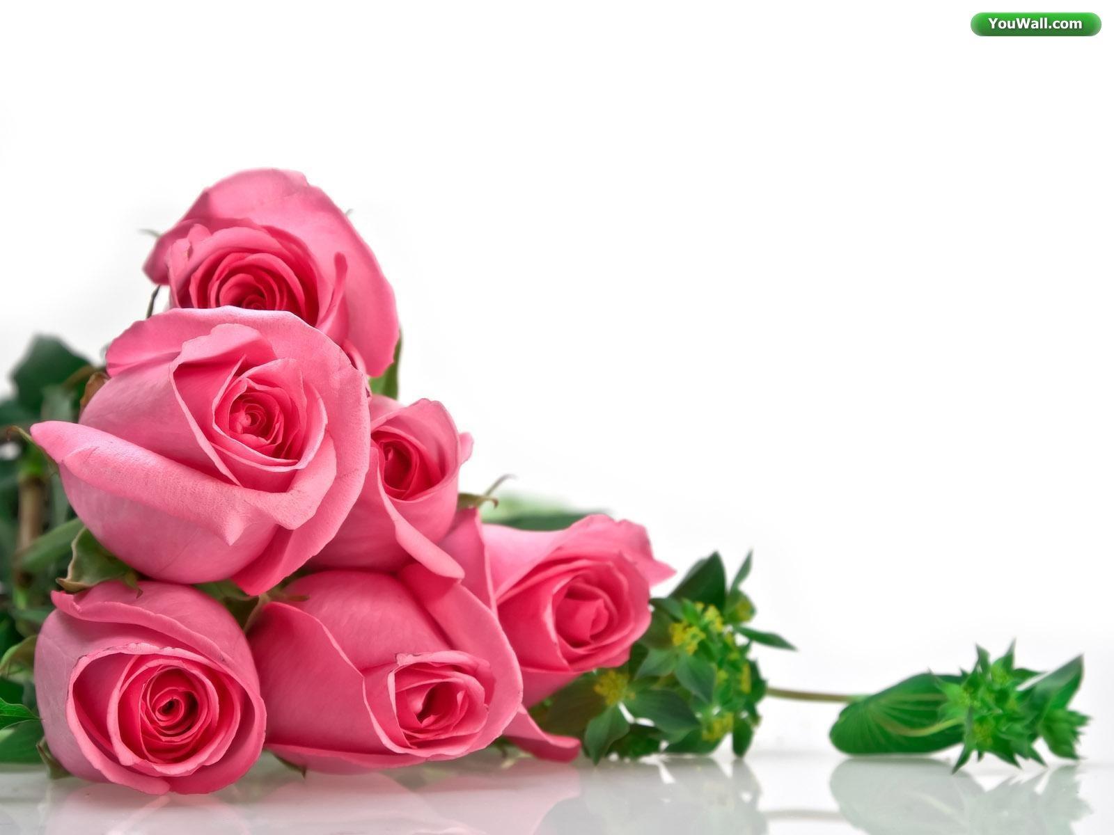 Happy Birthday To Me Flowers 1600x1200 Download Hd Wallpaper Wallpapertip