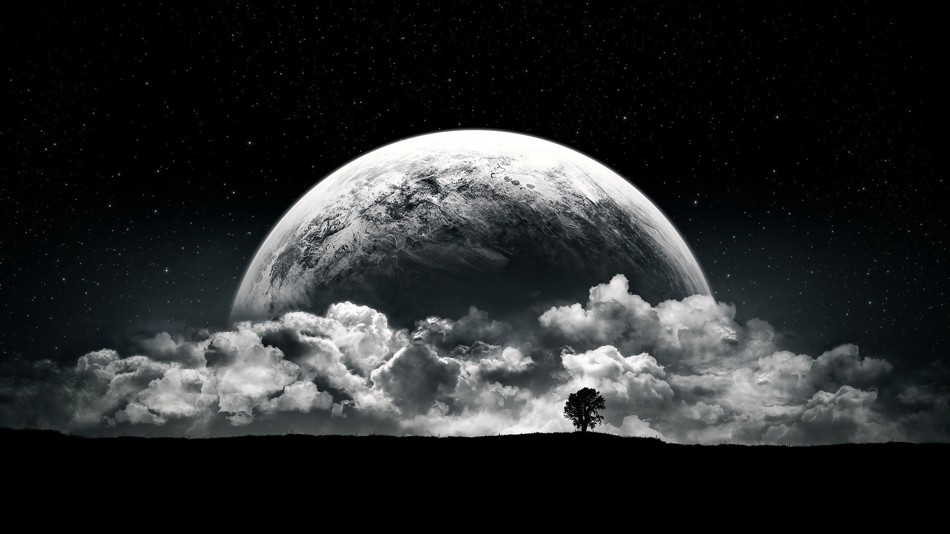 Moon Night Black And White 1920x1080 Download Hd Wallpaper Wallpapertip