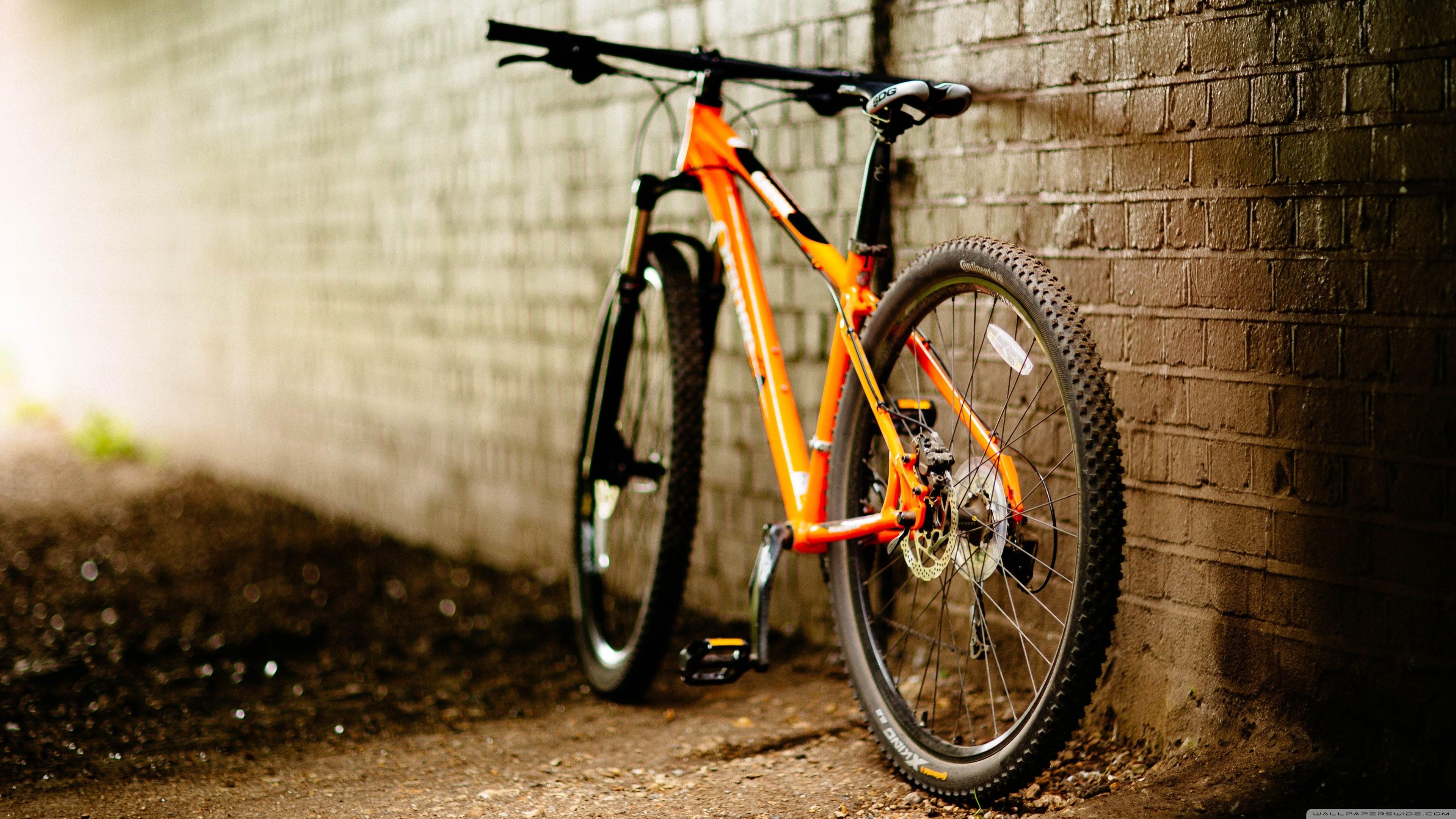 Bike Stunt Hd Wallpapers This Wallpaper Data Src Cycle Wallpaper Hd 3840x2160 Download Hd Wallpaper Wallpapertip