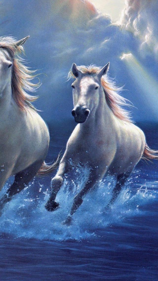 Horse Wallpaper Sky Best Wallpaper Download White Running Running Horse Wallpaper Hd 640x1136 Download Hd Wallpaper Wallpapertip