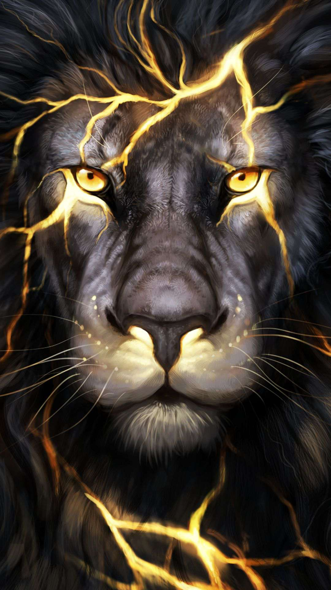 Cool Pictures Of Lions 736x1308 Download Hd Wallpaper Wallpapertip