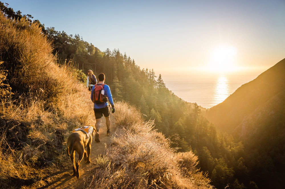 7 Hiking Tips To Beat The Heat This Summer Man Woman Hiking Trail Dog 1000x664 Download Hd Wallpaper Wallpapertip