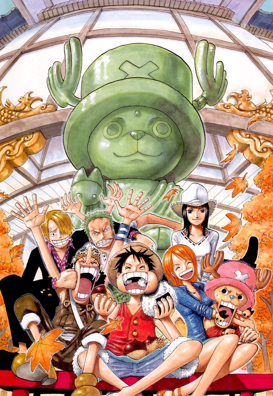 One Piece Wallpaper Whatsapp 2000x2900 Download Hd Wallpaper Wallpapertip