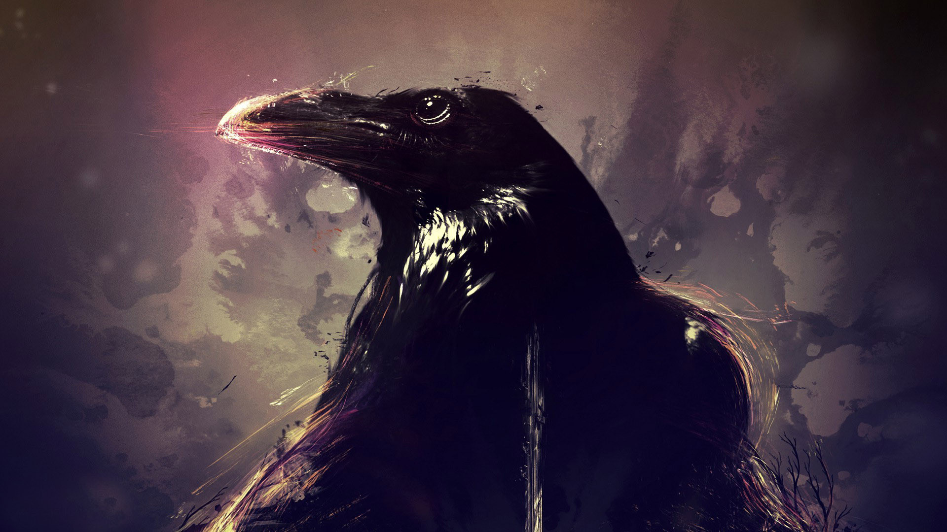 Crow Wallpapers Data Src Crow Desktop Background 1920x1080 Download Hd Wallpaper Wallpapertip