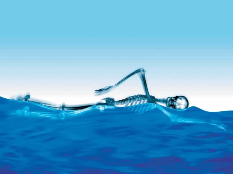 Skeleton Swimming - 800x600 - Download HD Wallpaper - WallpaperTip