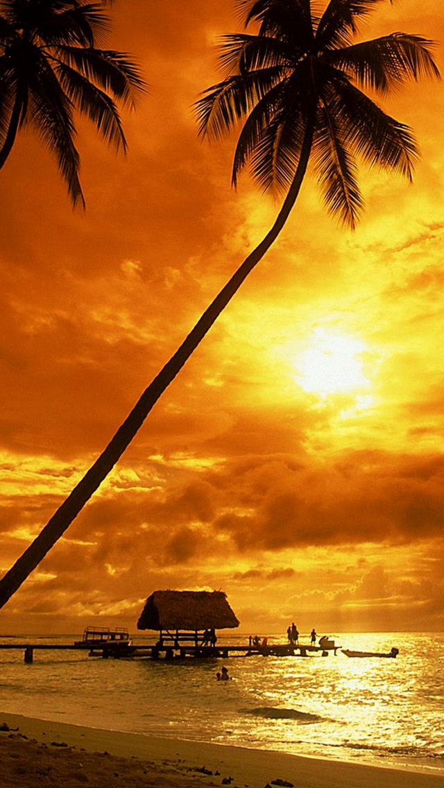 Beach Sunset Background Portrait 640x1136 Download Hd Wallpaper Wallpapertip