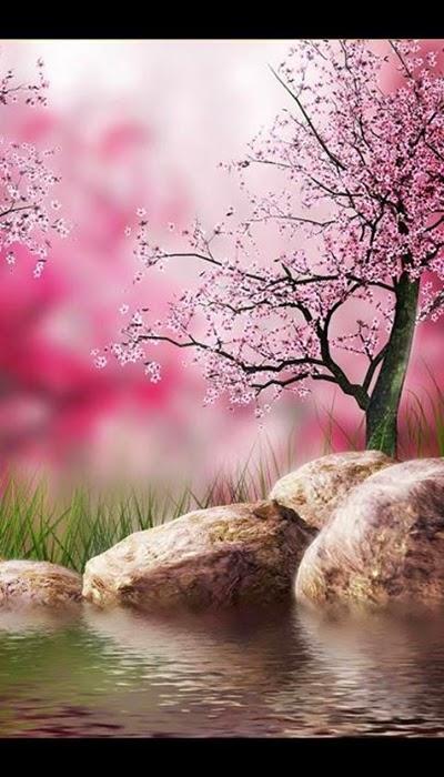 Beautiful Nature Wallpaper For Android 400x700 Download Hd Wallpaper Wallpapertip