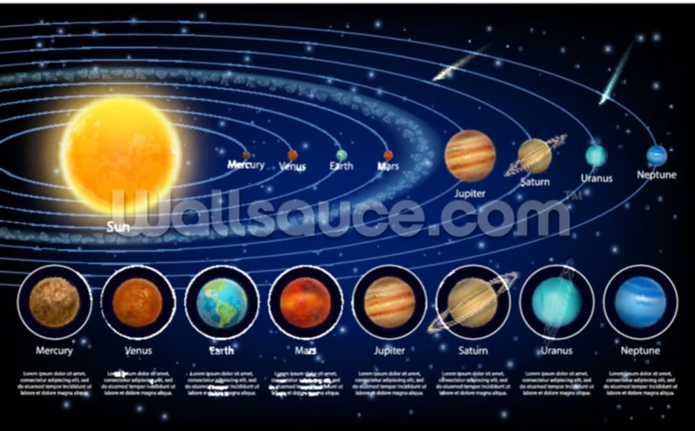 Solar System Planets With Detail Mural Wallpaper Solar System Planets 1000x620 Download Hd Wallpaper Wallpapertip