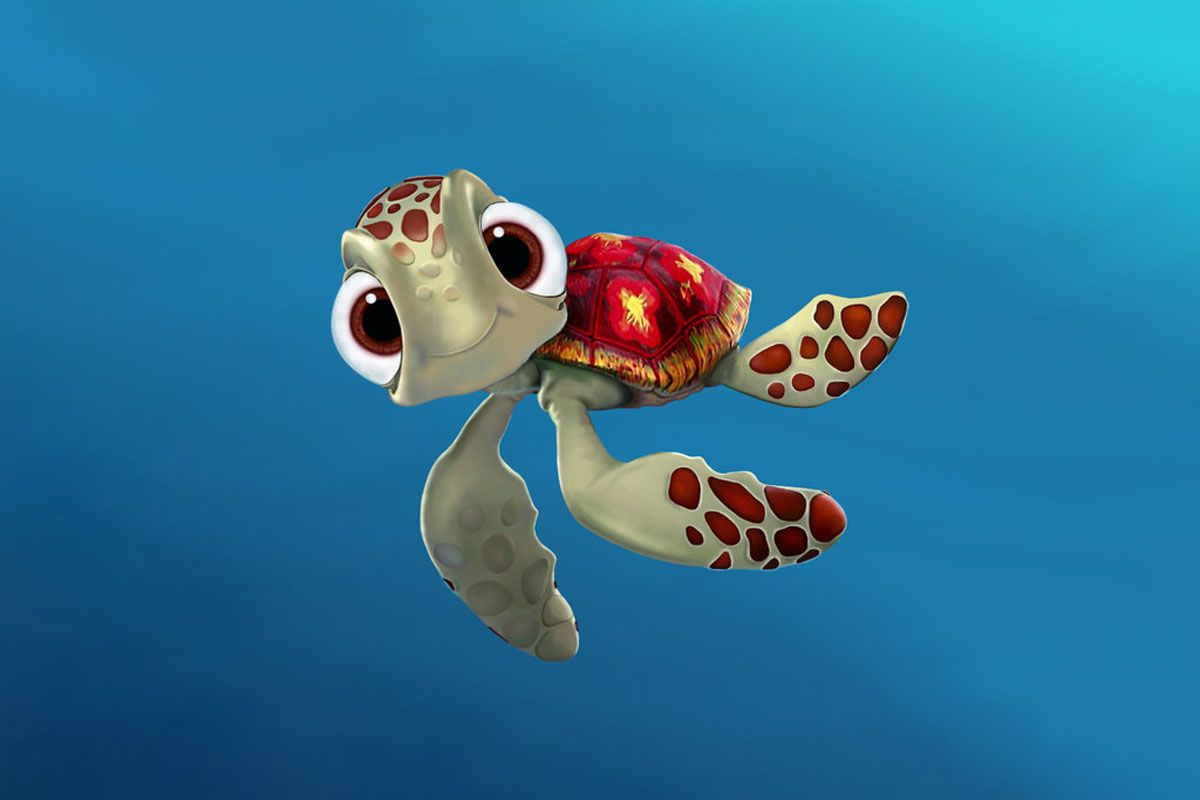 Cute Turtle Wallpapers Pictures Turtle Desktop Backgrounds 1200x800 Download Hd Wallpaper Wallpapertip