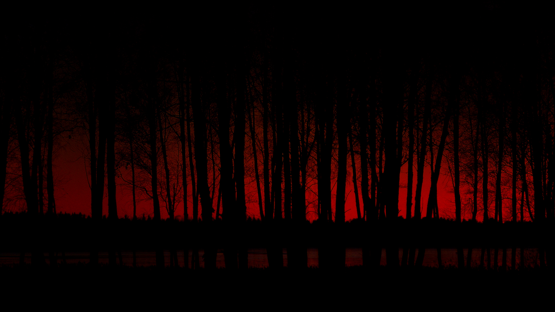 146 1468180 scary dark forest desktop wallpaper red and black