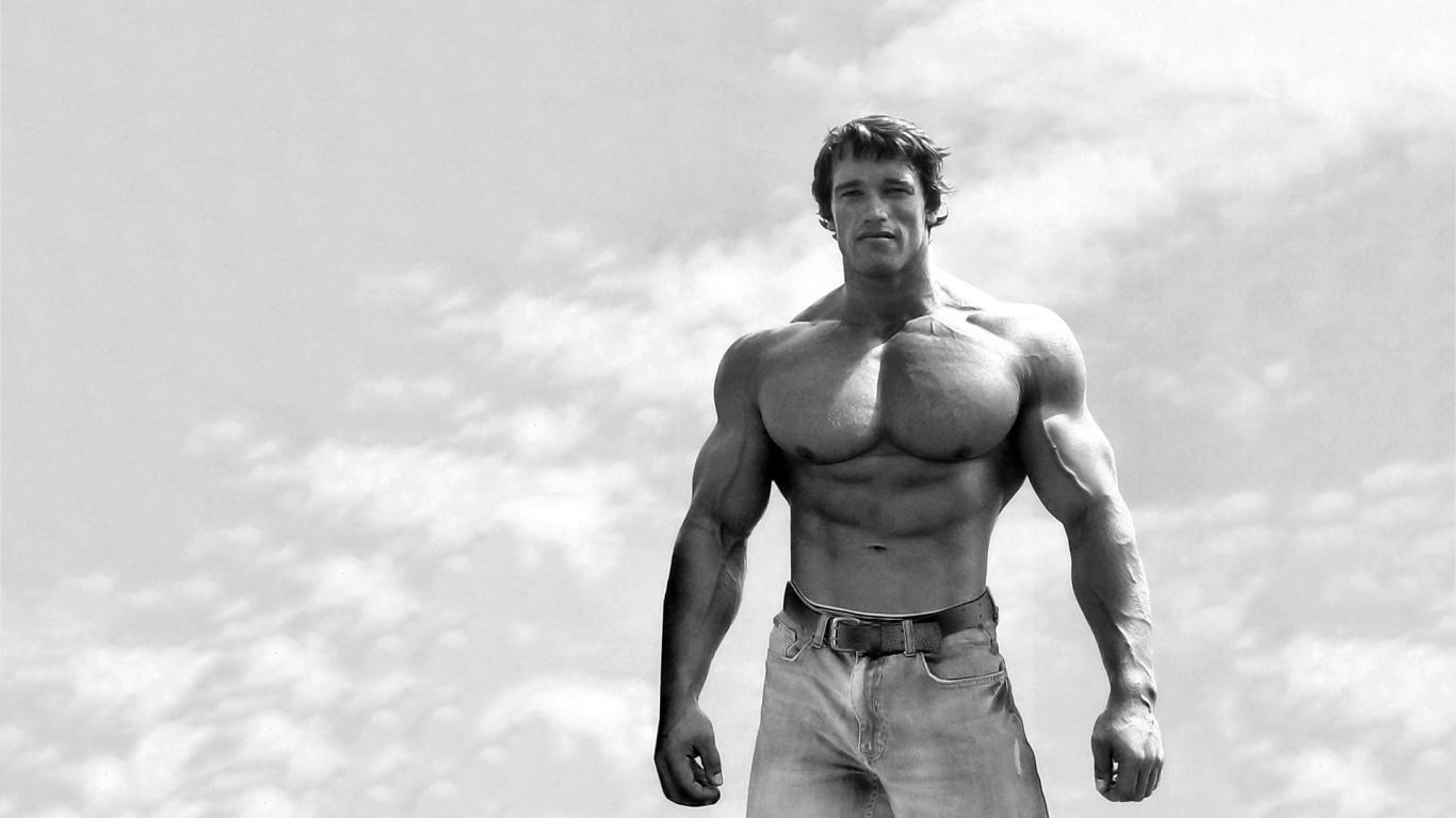 Arnold Schwarzenegger Wallpaper Pc 1366x768 Download Hd Wallpaper Wallpapertip