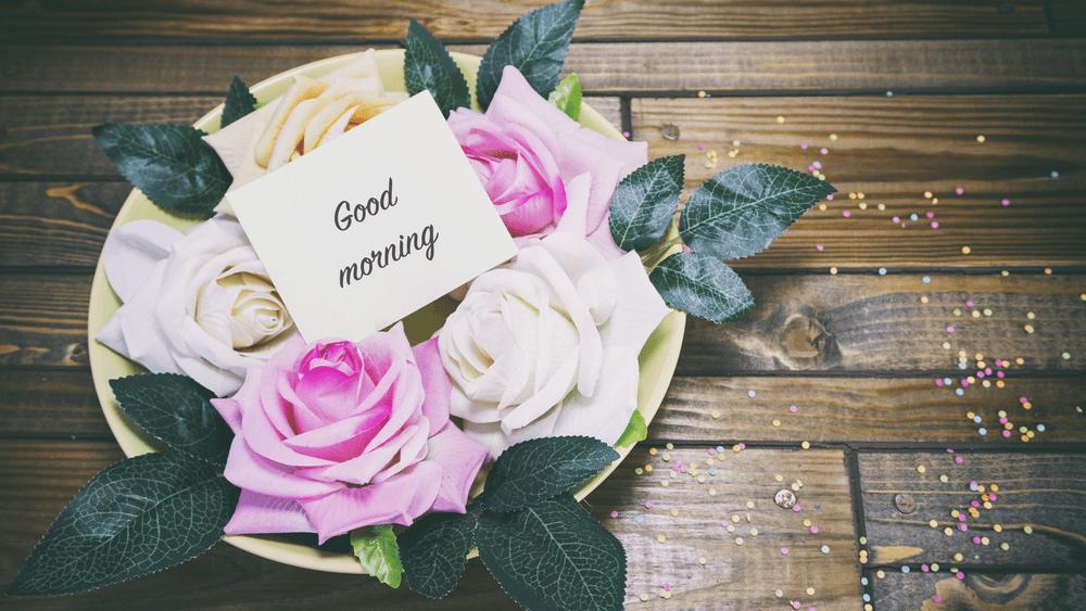 Good Morning Flowers Images Garden Roses 1000x563 Download Hd Wallpaper Wallpapertip