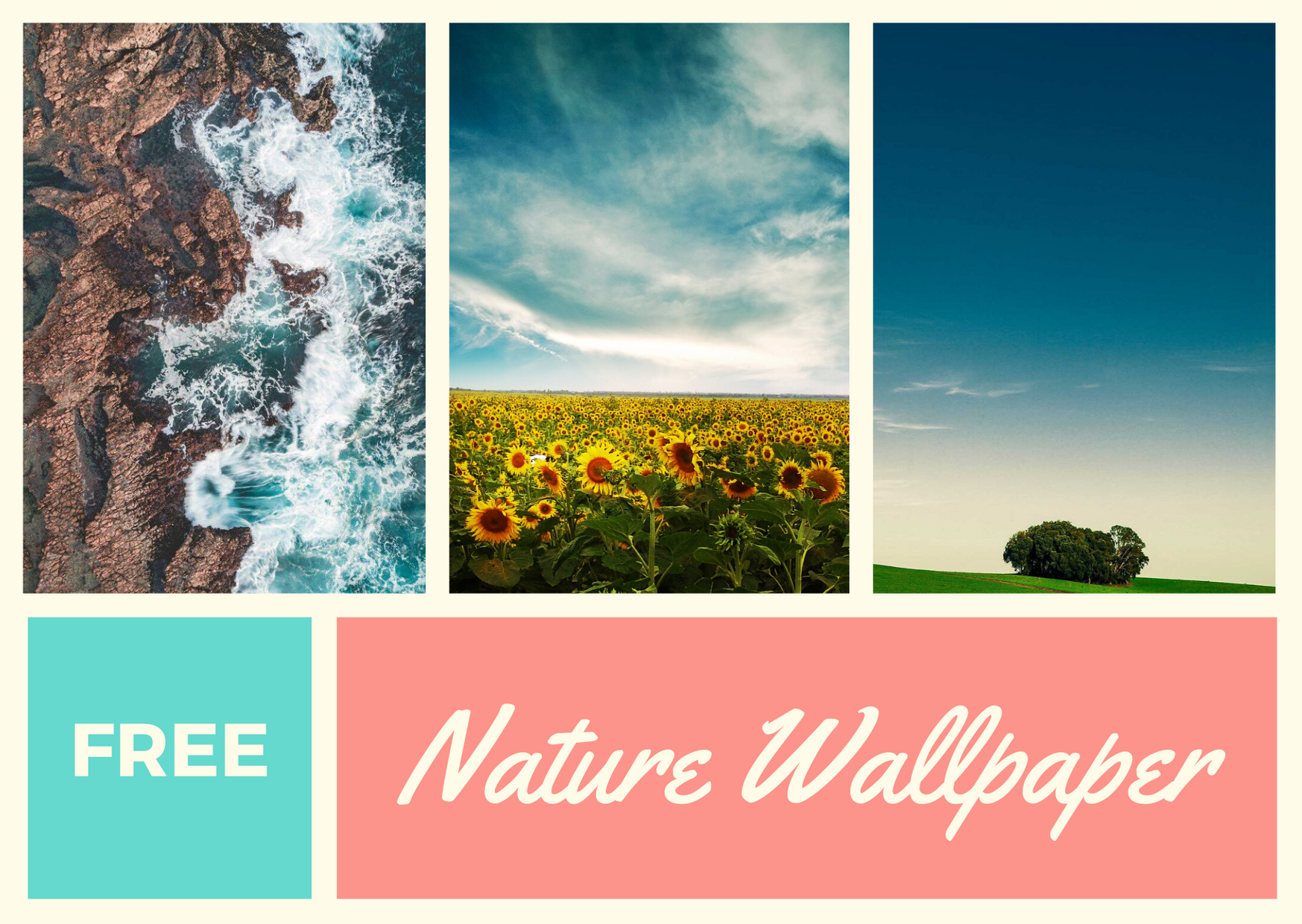 Cool Phone Wallpapers Nature To Fresh Your Device Poster 1747x1240 Download Hd Wallpaper Wallpapertip
