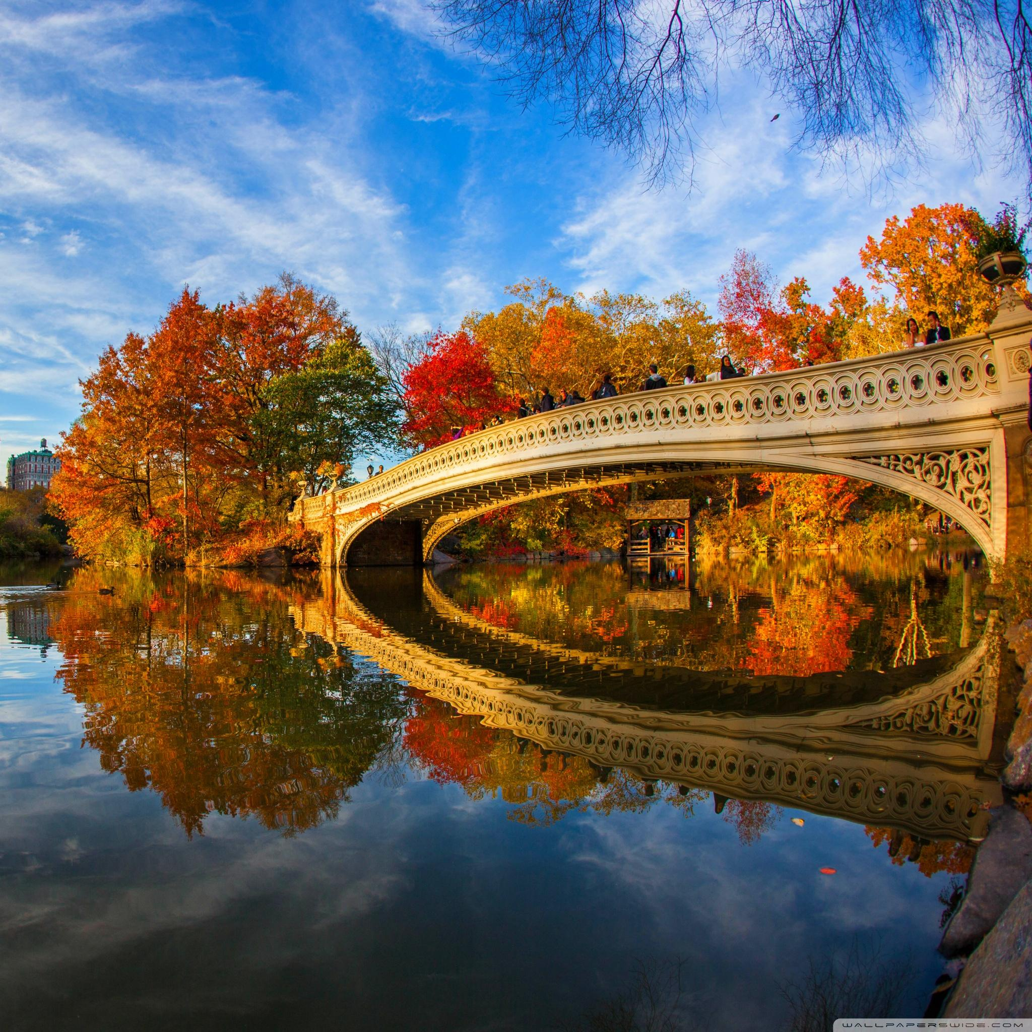 Fall Ipad Wallpaper 53 Image Collections New York Central Park 2048x2048 Download Hd Wallpaper Wallpapertip