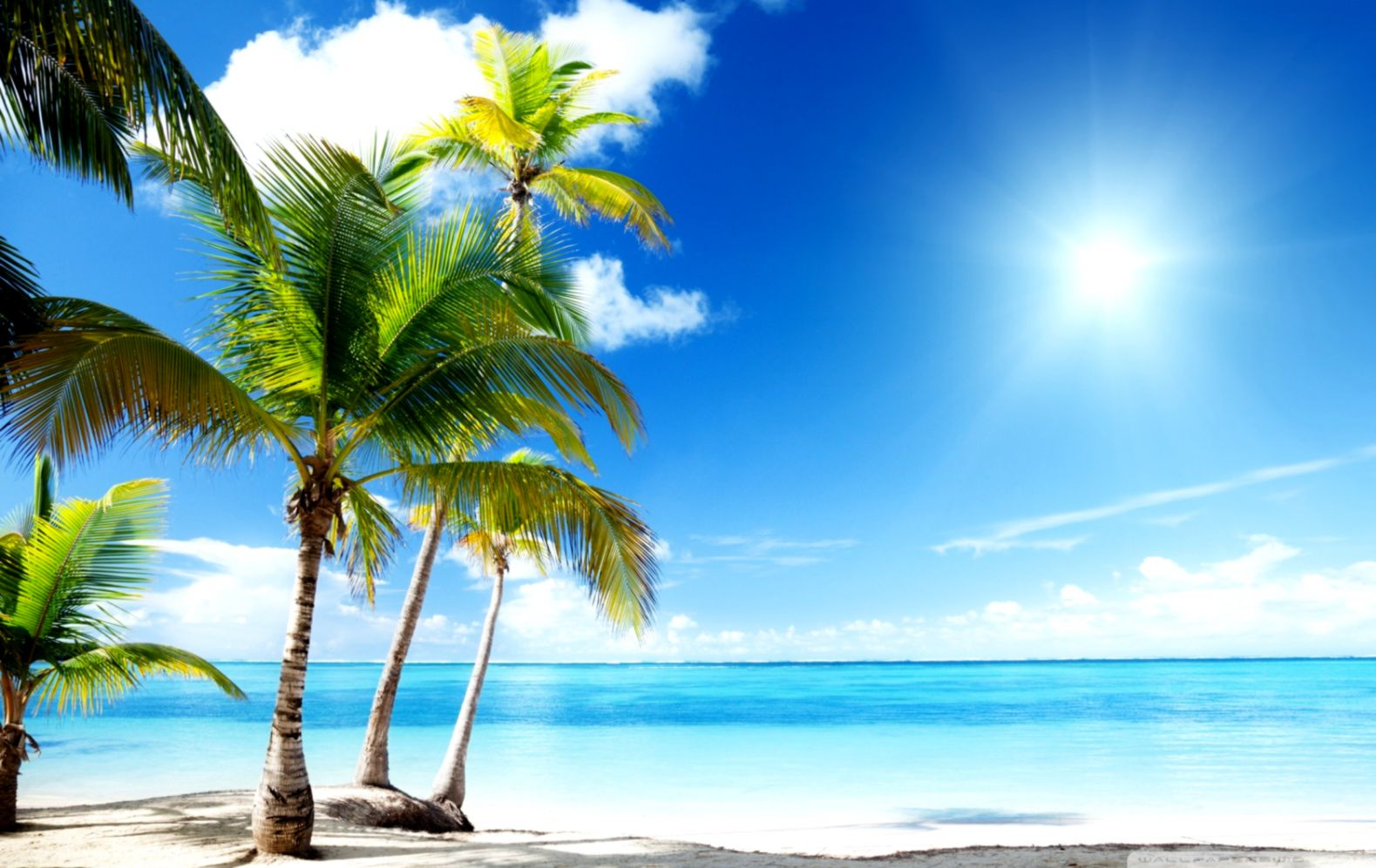 Tropical Beach Paradise 4k Hd Desktop Wallpaper For ...