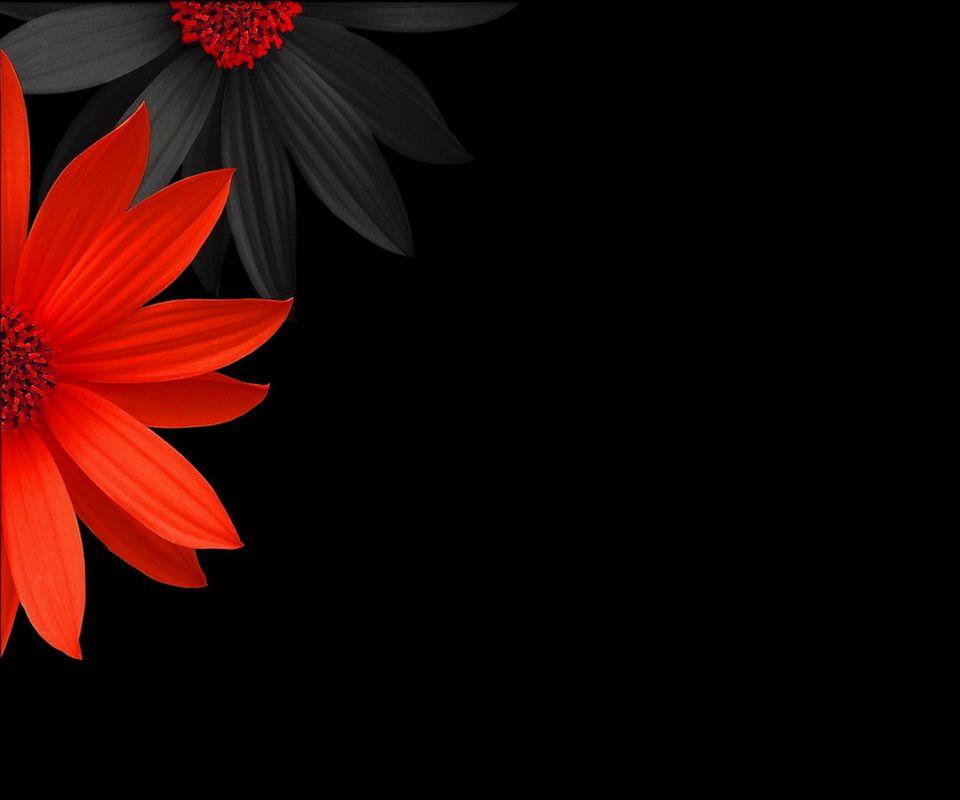 Black Colour Wallpaper Hd For Mobile 960x800 Download Hd Wallpaper Wallpapertip