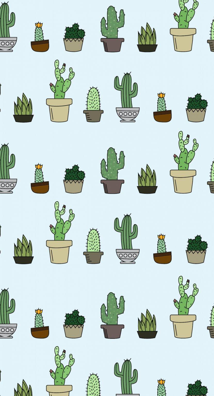 Desktop Wallpaper Cactaceae Succulent Plant Home Screen Aesthetic Cactus 830x1535 Download Hd Wallpaper Wallpapertip