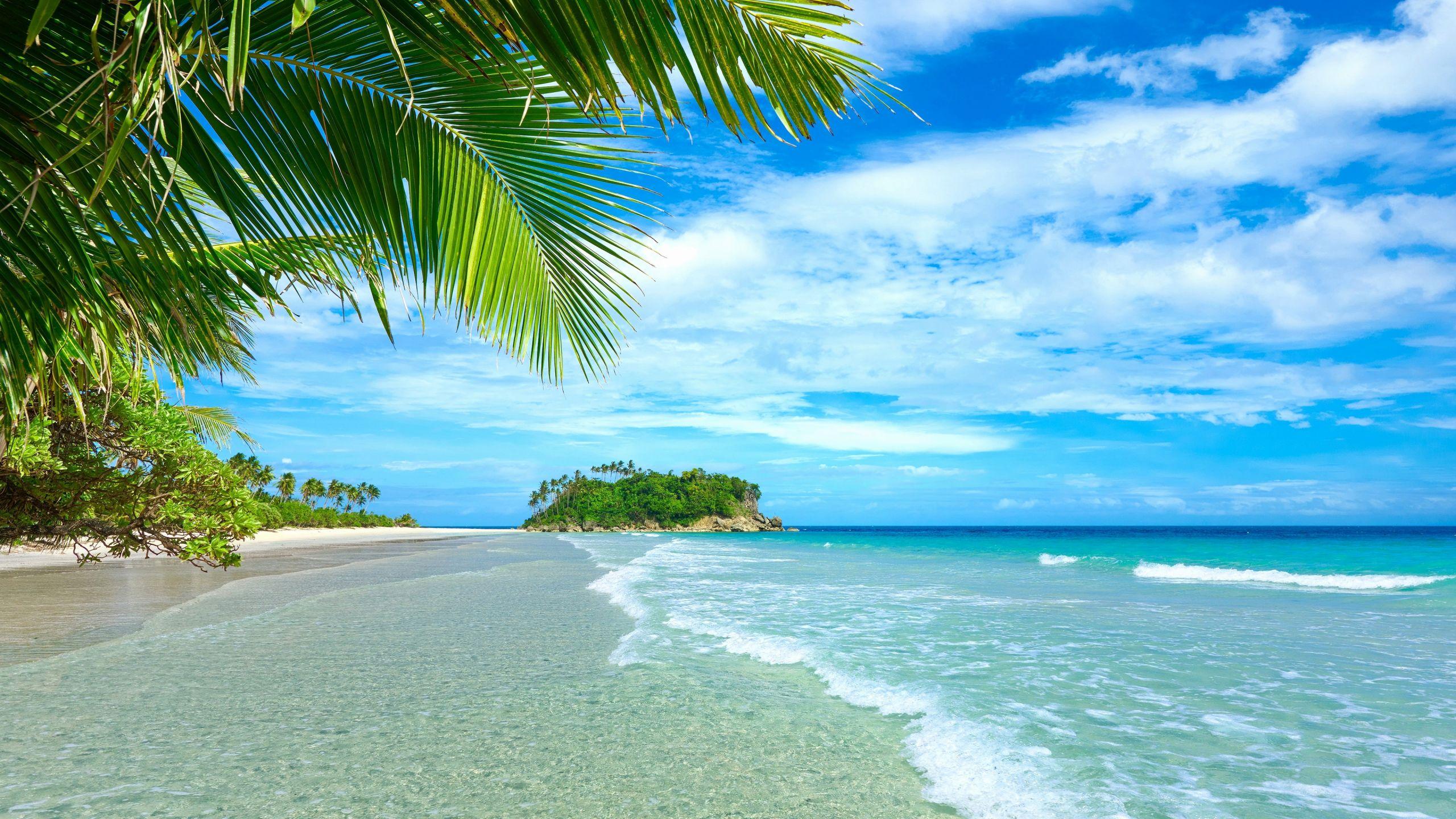 Beautiful Scenery Beach 2560x1440 Download Hd Wallpaper Wallpapertip