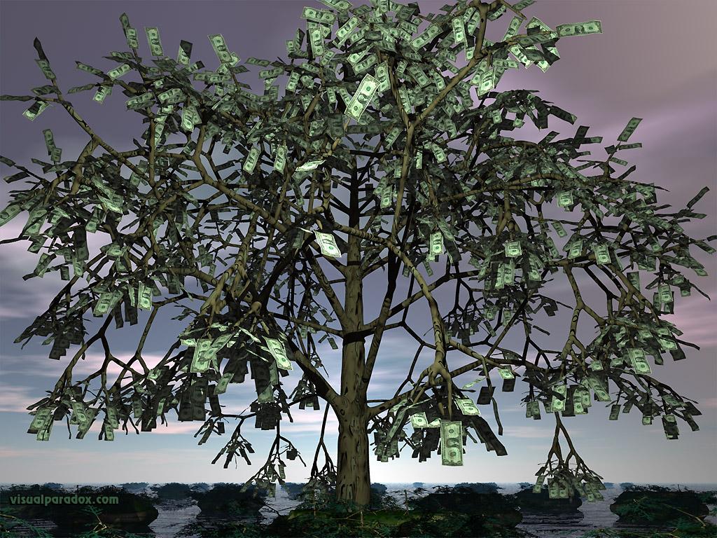 Cash Currency Bills Growth Leaf Leaves Dollars 3d Wallpaper Money Tree That Grows Real Money 1024x768 Download Hd Wallpaper Wallpapertip