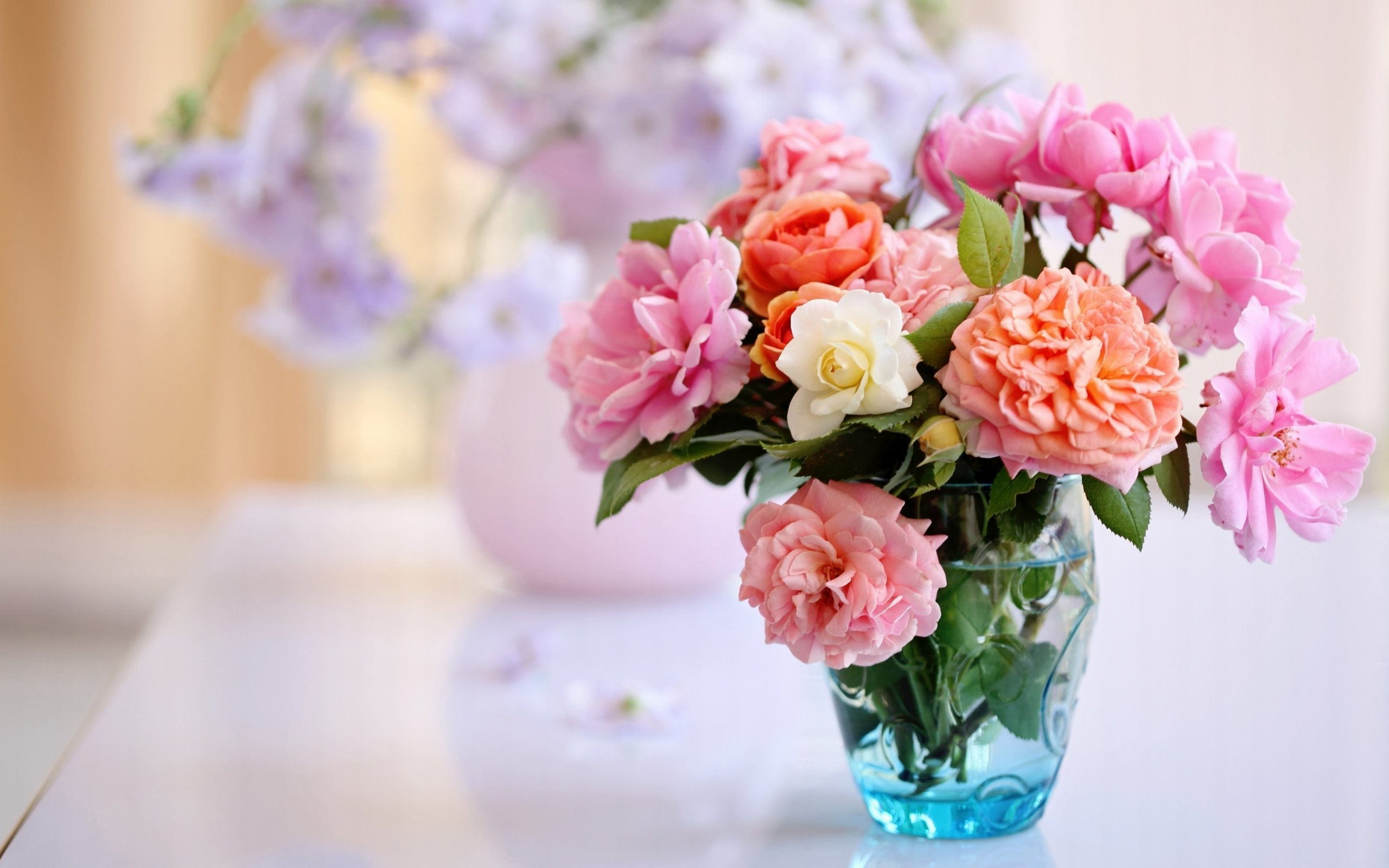Wallpapers Of Beautiful Flowers Group Good Morning Images With Saturday 2560x1600 Download Hd Wallpaper Wallpapertip
