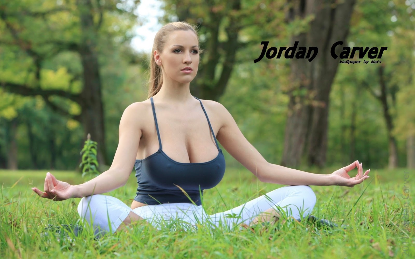 Jordan Carver Yoga 1600x1000 Download Hd Wallpaper Wallpapertip
