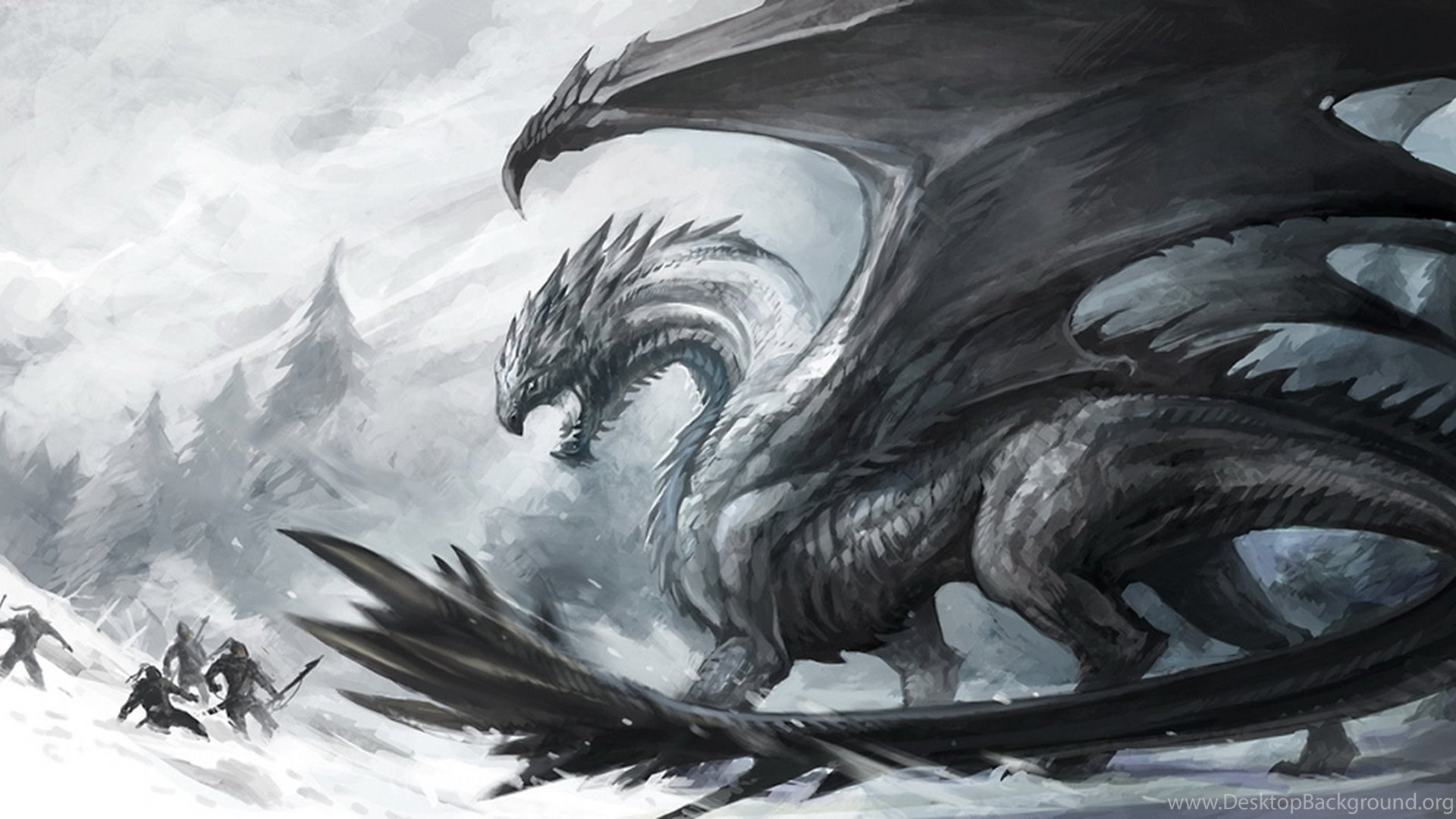 High Resolution Fantasy Black Dragon Wallpapers Hd White Dragon 1920x1080 Download Hd Wallpaper Wallpapertip