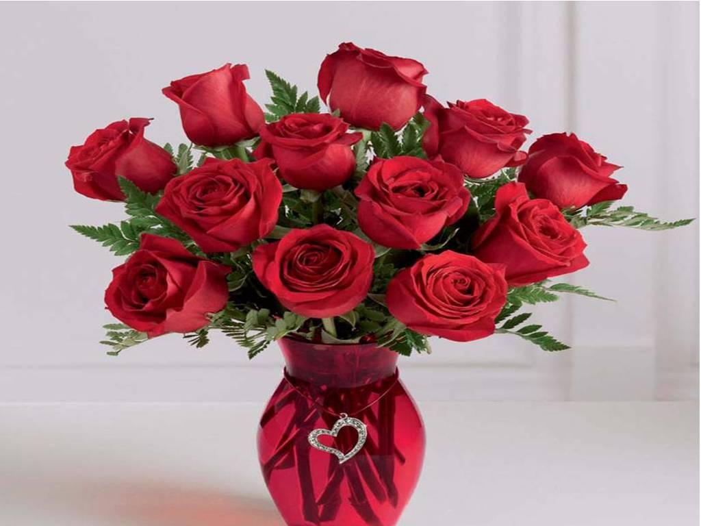 Beautiful Red Rose Wallpapers ...
