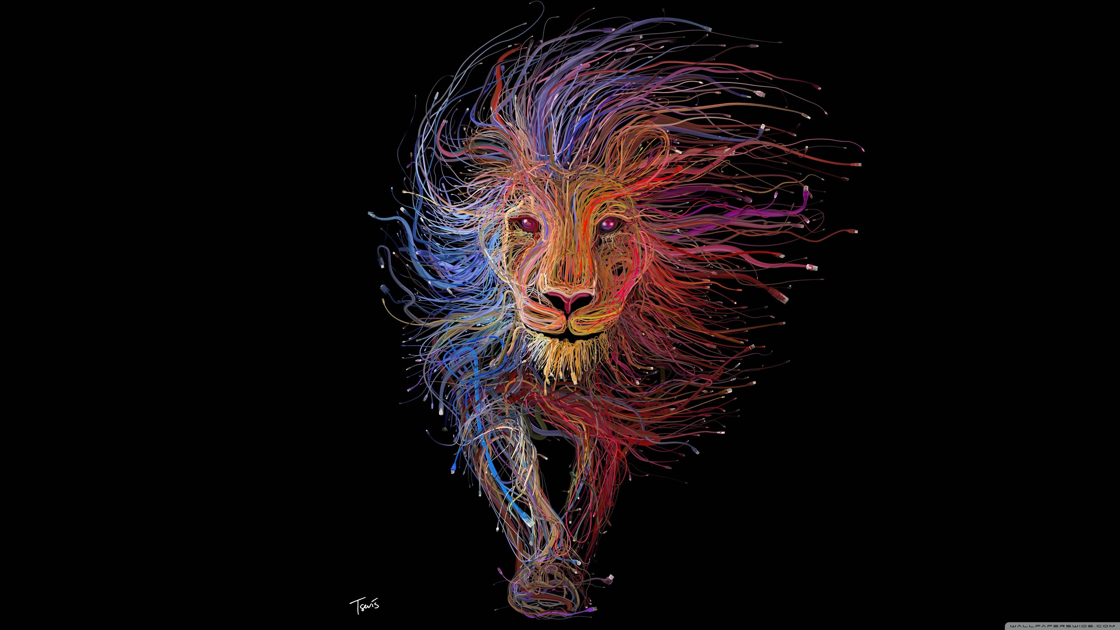 Lion Of Lyon 1920x1080 Download Hd Wallpaper Wallpapertip