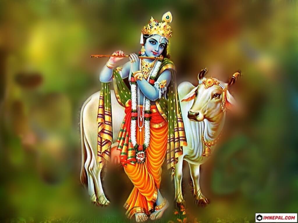 Hindu Deity Lord Shri Krishna Images Wallpapers 1024x768 Download Hd Wallpaper Wallpapertip