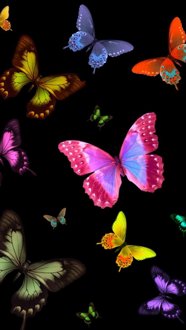 Butterflies On Black Background 720x1280 Download Hd Wallpaper Wallpapertip