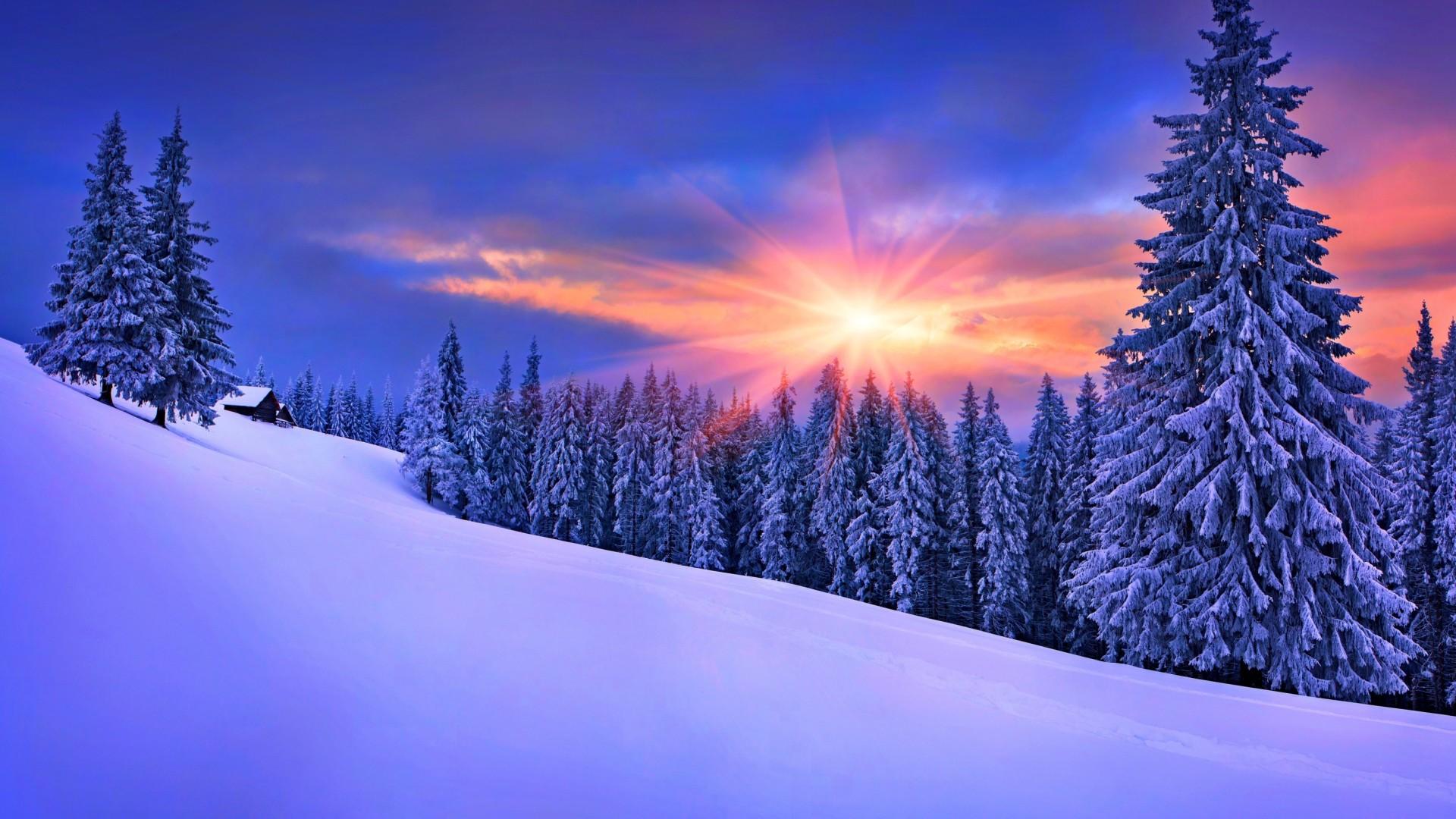 Winter Train Background Wallpaper Hd Winter Sunshine 1920x1080 Download Hd Wallpaper Wallpapertip