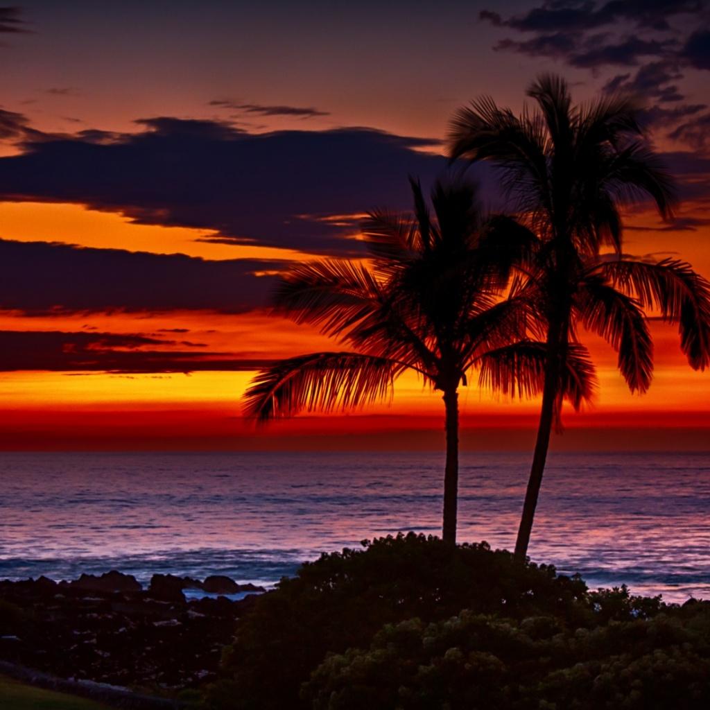 Hawaii Beach Sunset Wallpaper 1024x1024 Download Hd Wallpaper Wallpapertip