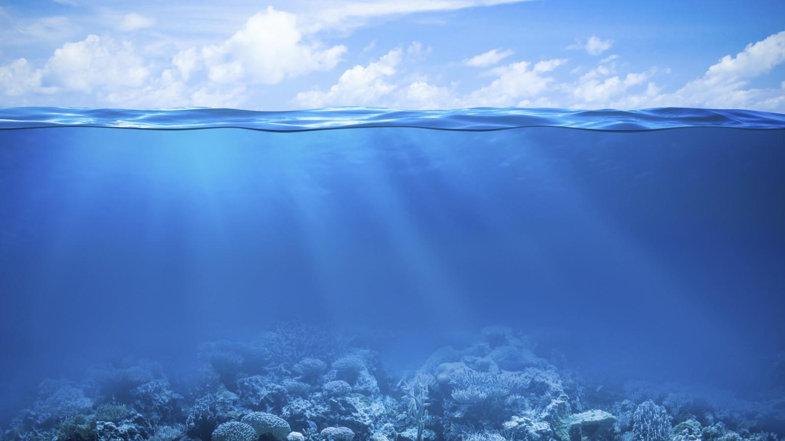 27 272633 underwater sea water hd