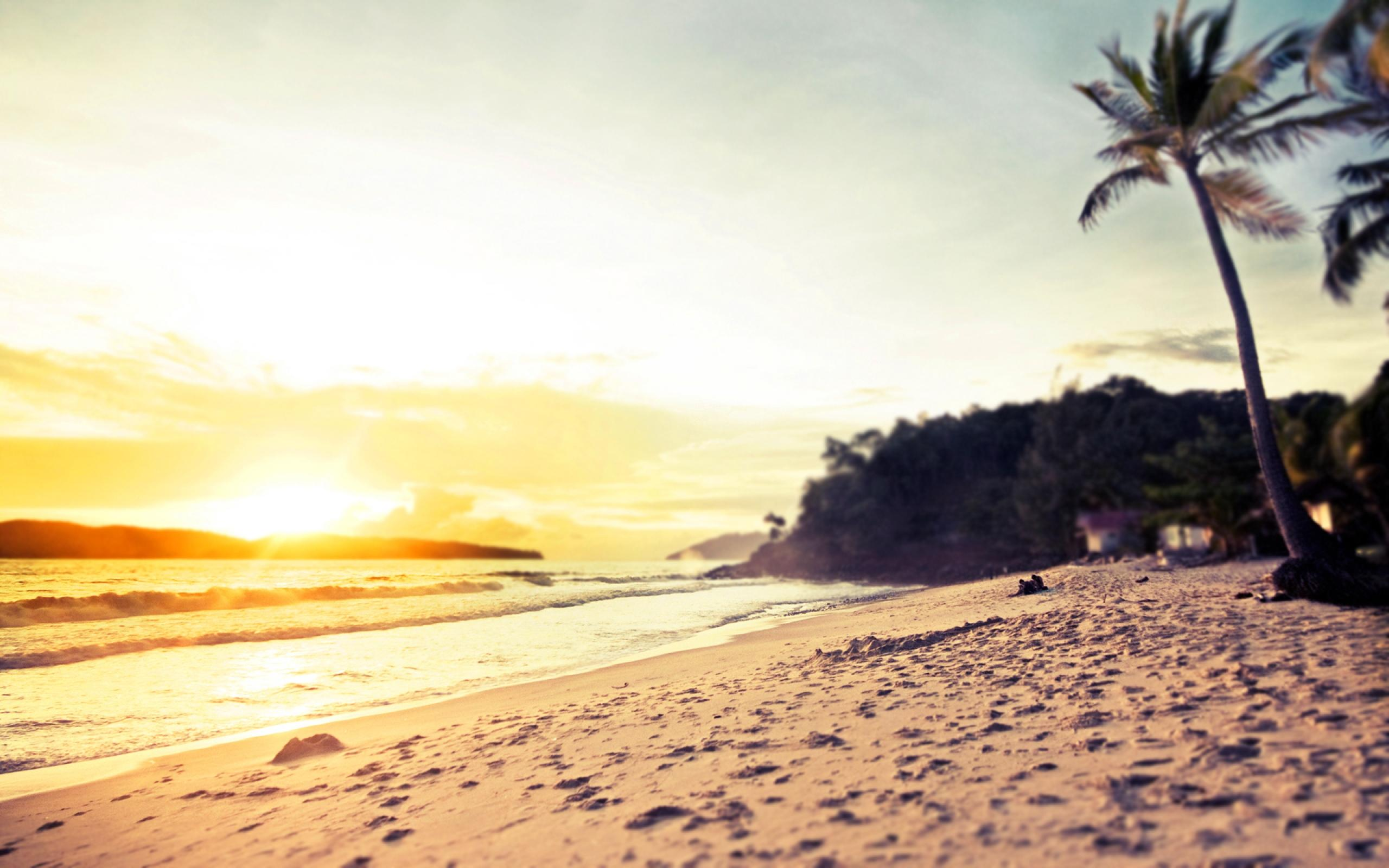 California Beaches Tumblr Wallpaper Photography Beach Background Hd 2560x1600 Download Hd Wallpaper Wallpapertip