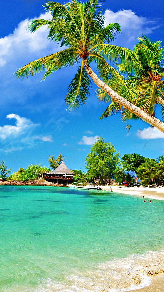 トロピカルビーチの壁紙iphone 熱帯の楽園の壁紙 640x1136 Wallpapertip