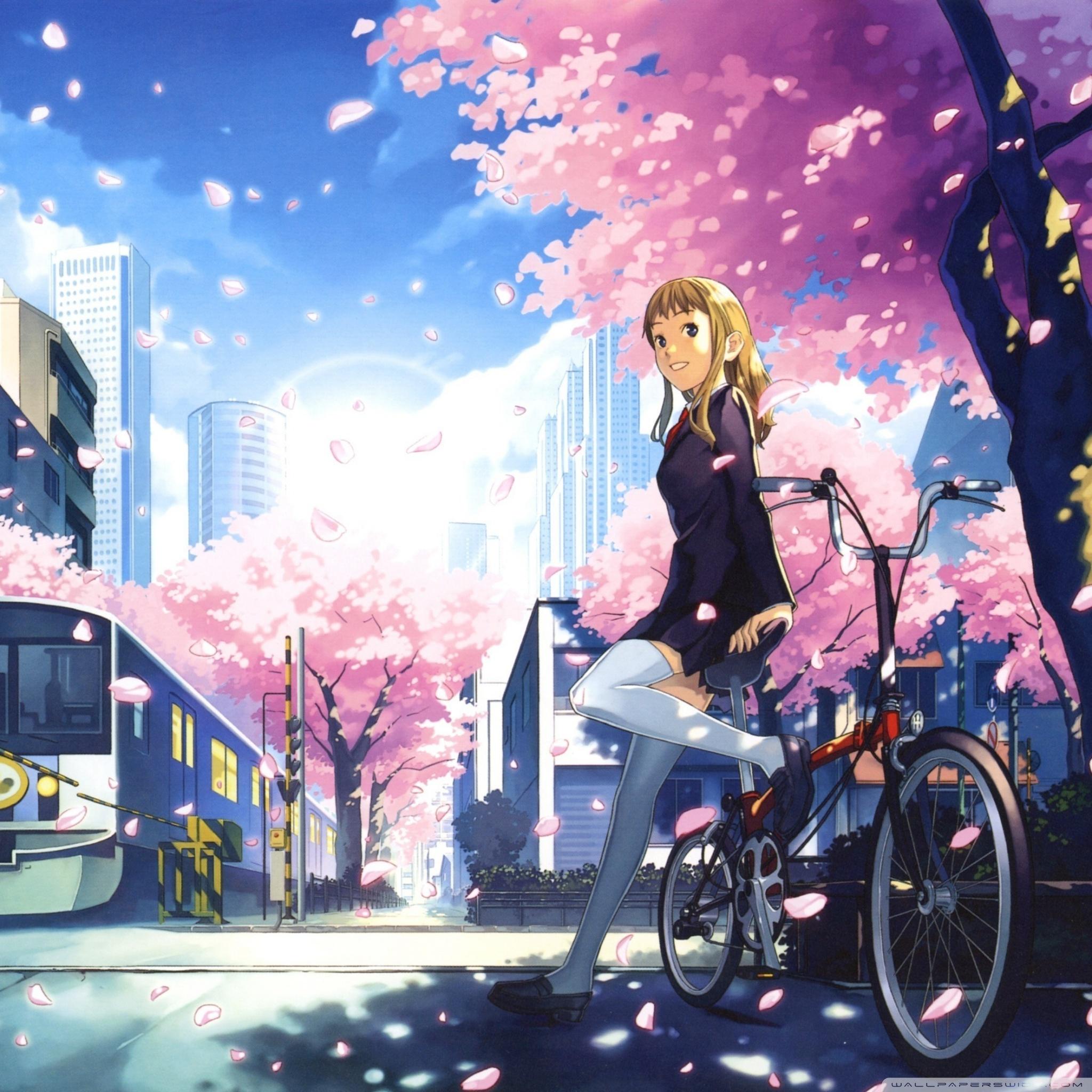 Anime Wallpaper Ipad Tapeten Anime 2048x2048 Wallpapertip