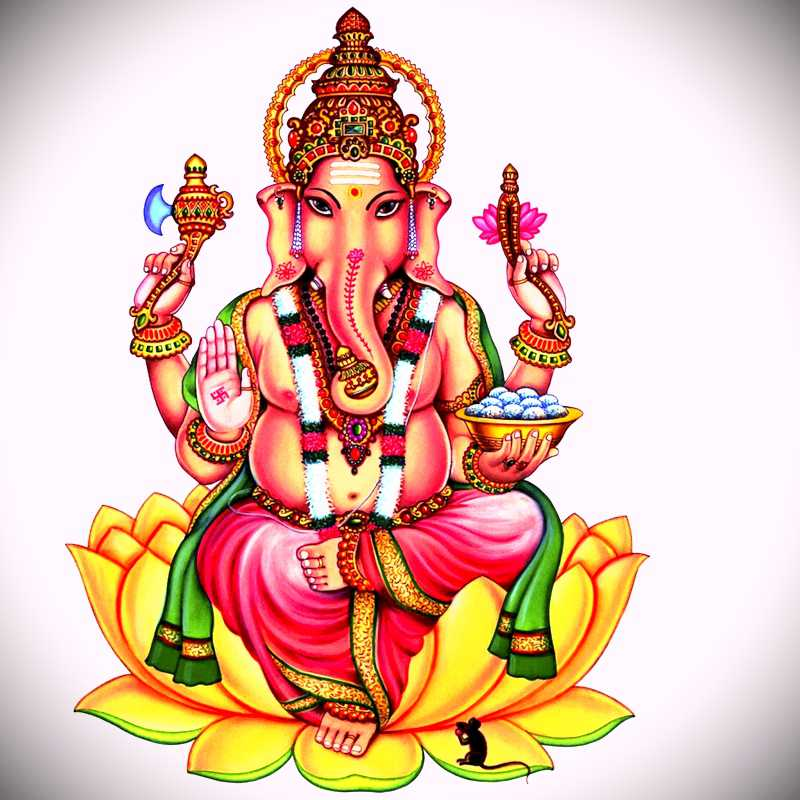 Lord Ganesha Hd Wallpapers 1080p Free Download Lord Ganesh Images Hd 1080p Free Download 800x800 Download Hd Wallpaper Wallpapertip