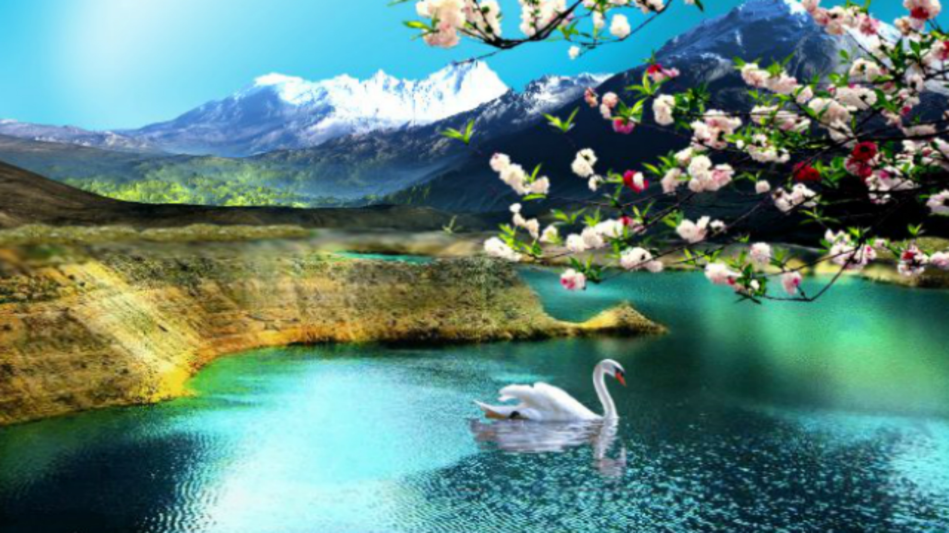 3 34843 wallpaper hd 1080p free download for windows windows