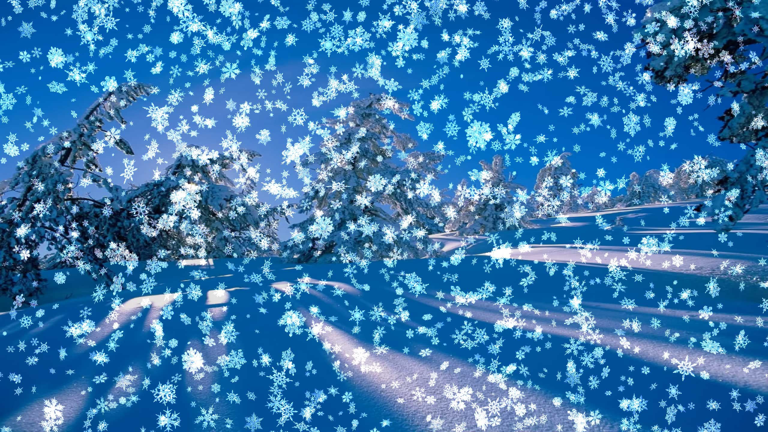 3 39536 animated live wallpaper hd for pc moving winter