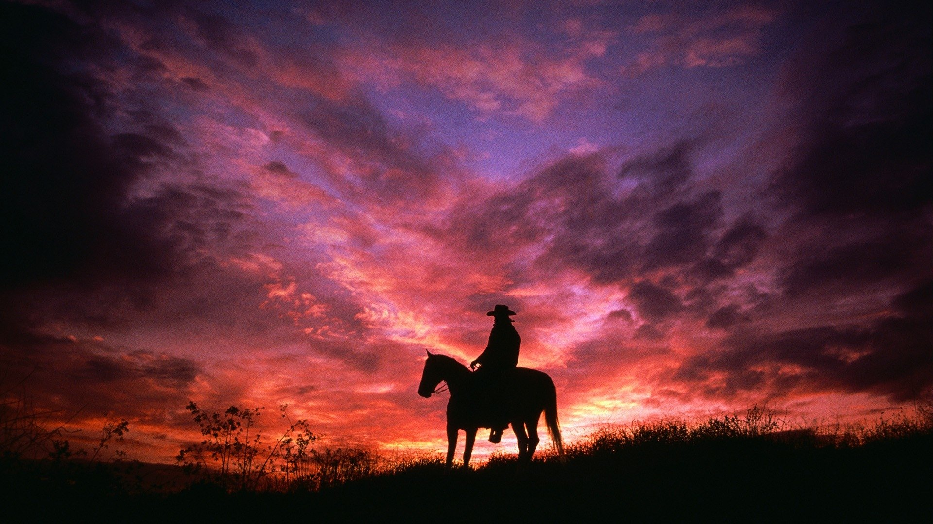 677490 Title Cowboy On His Horse In Sunset Silhouette Cowboy On Horse Silhouette Sunset 1920x1080 Download Hd Wallpaper Wallpapertip