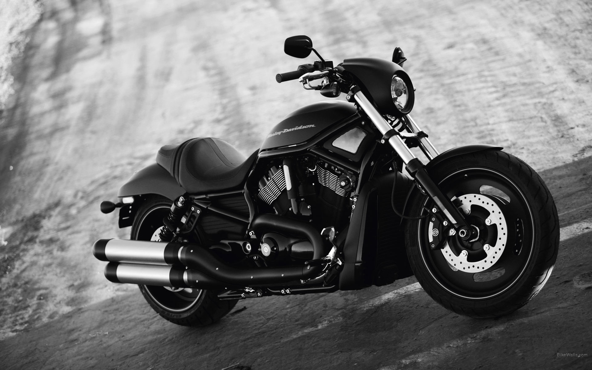 Harley Davidson Vrsc Night Rod 1920x1200 Download Hd Wallpaper Wallpapertip