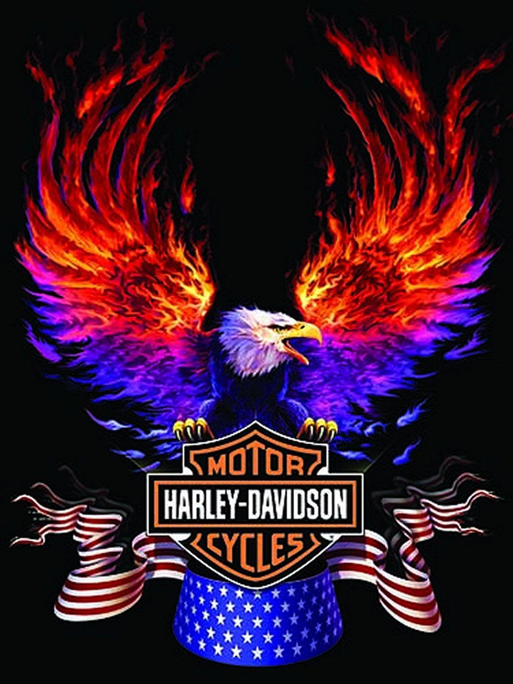 Harley Davidson 1050x1400 Download Hd Wallpaper Wallpapertip