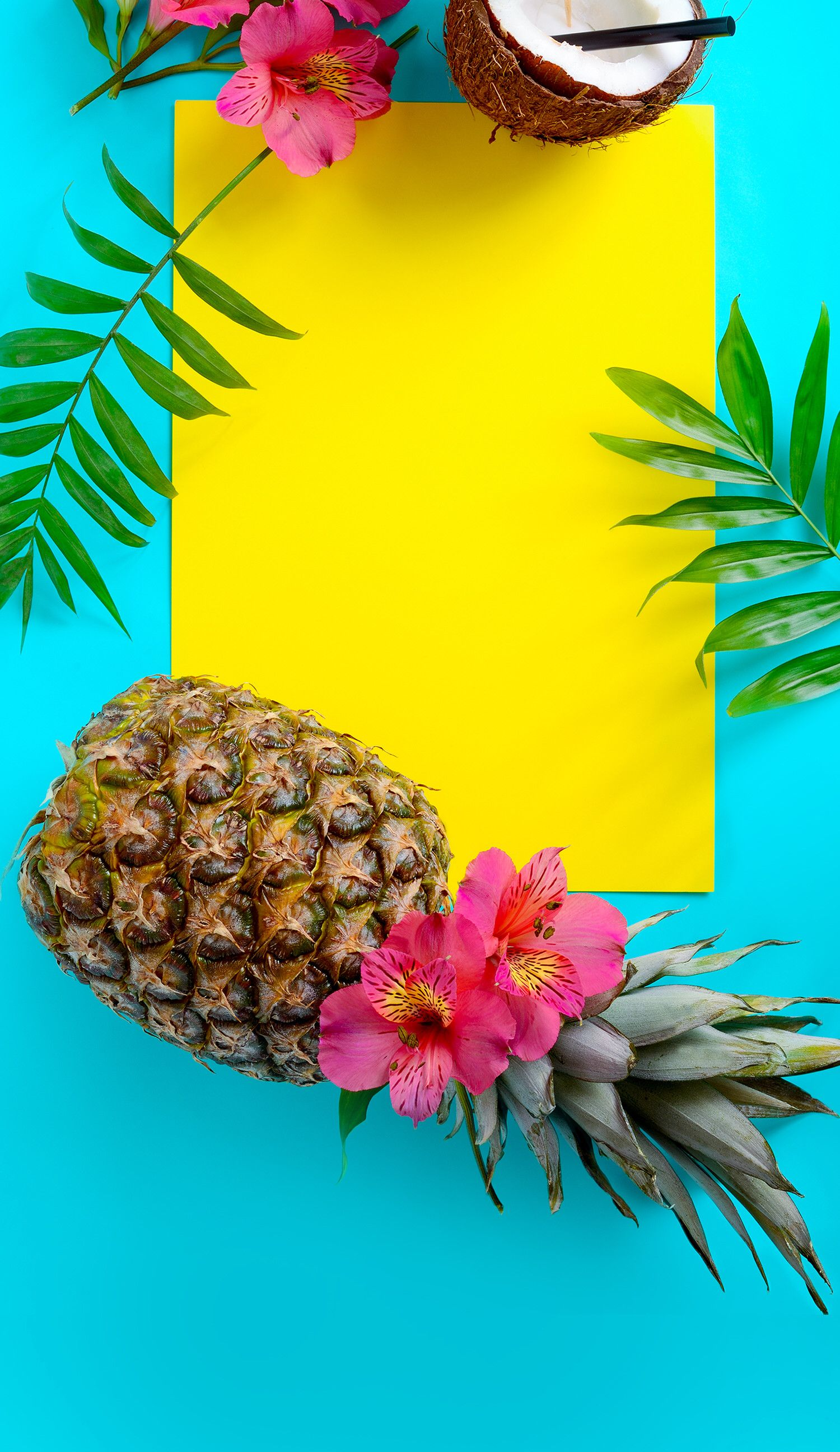 熱帯の夏の背景 フルーツ壁紙iphone 1500x2592 Wallpapertip
