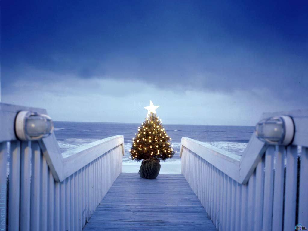 Merry Christmas Eve Beach Fond D Ecran De Noel Gratuit Pour Ordinateur 1024x768 Wallpapertip