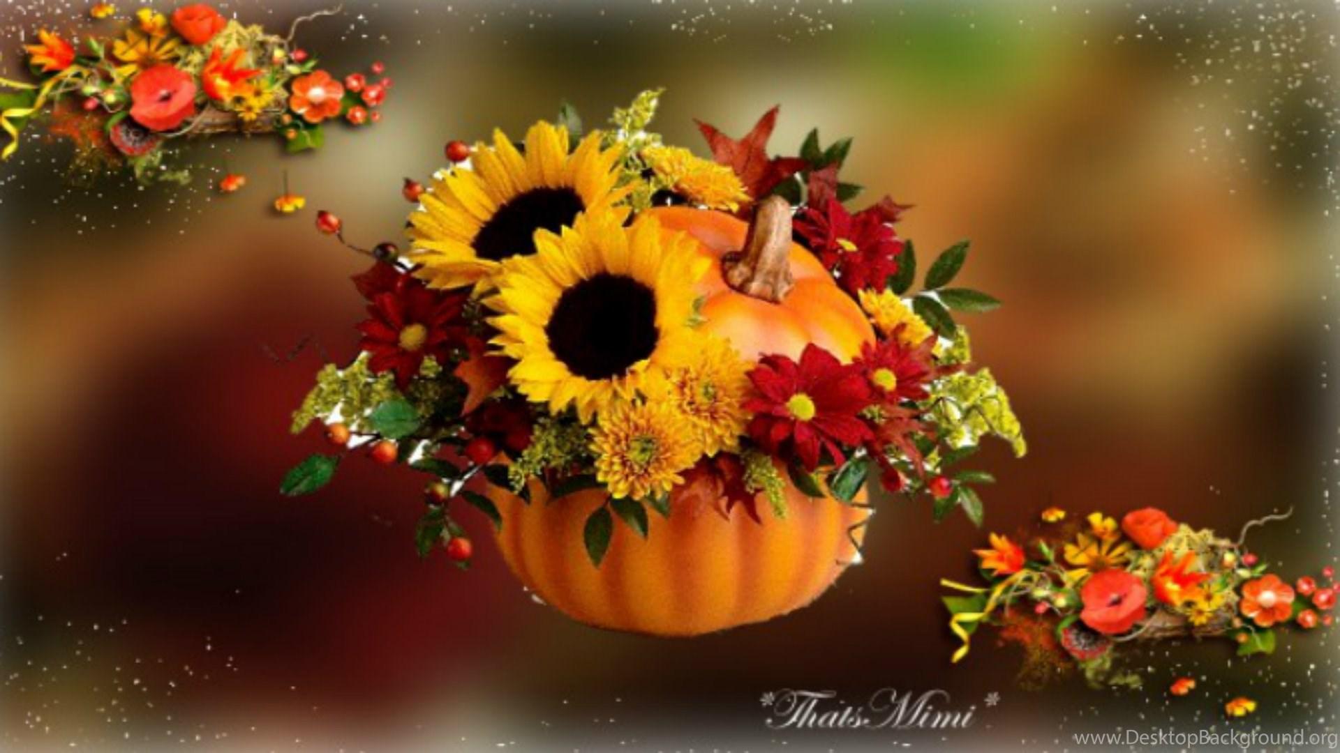 35 358053 fall flowers wallpapers celebrate autumn fall pumpkin fall