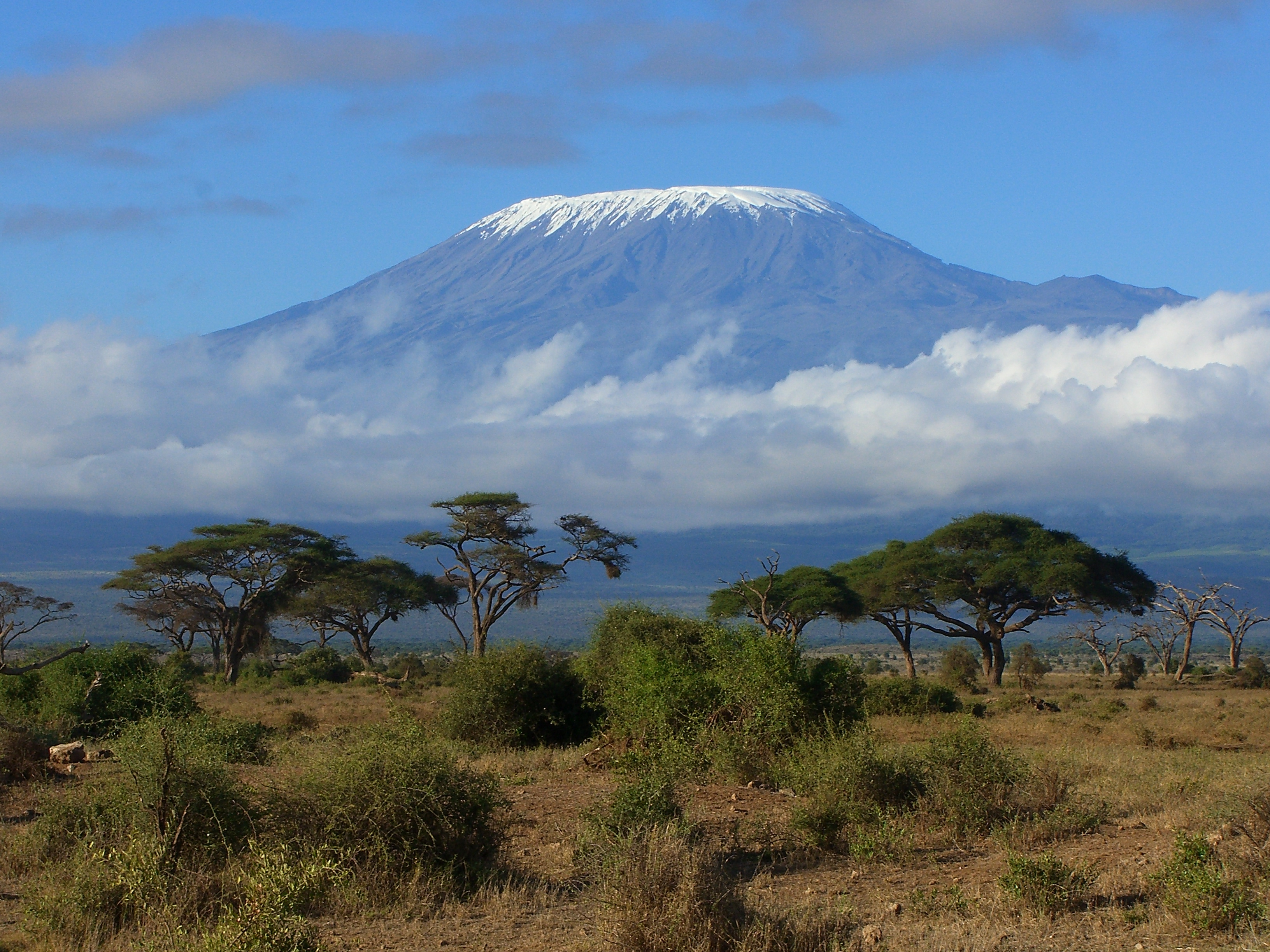 Mt Kilimanjaro From Serengeti - 3264x2448 - Download HD Wallpaper -  WallpaperTip