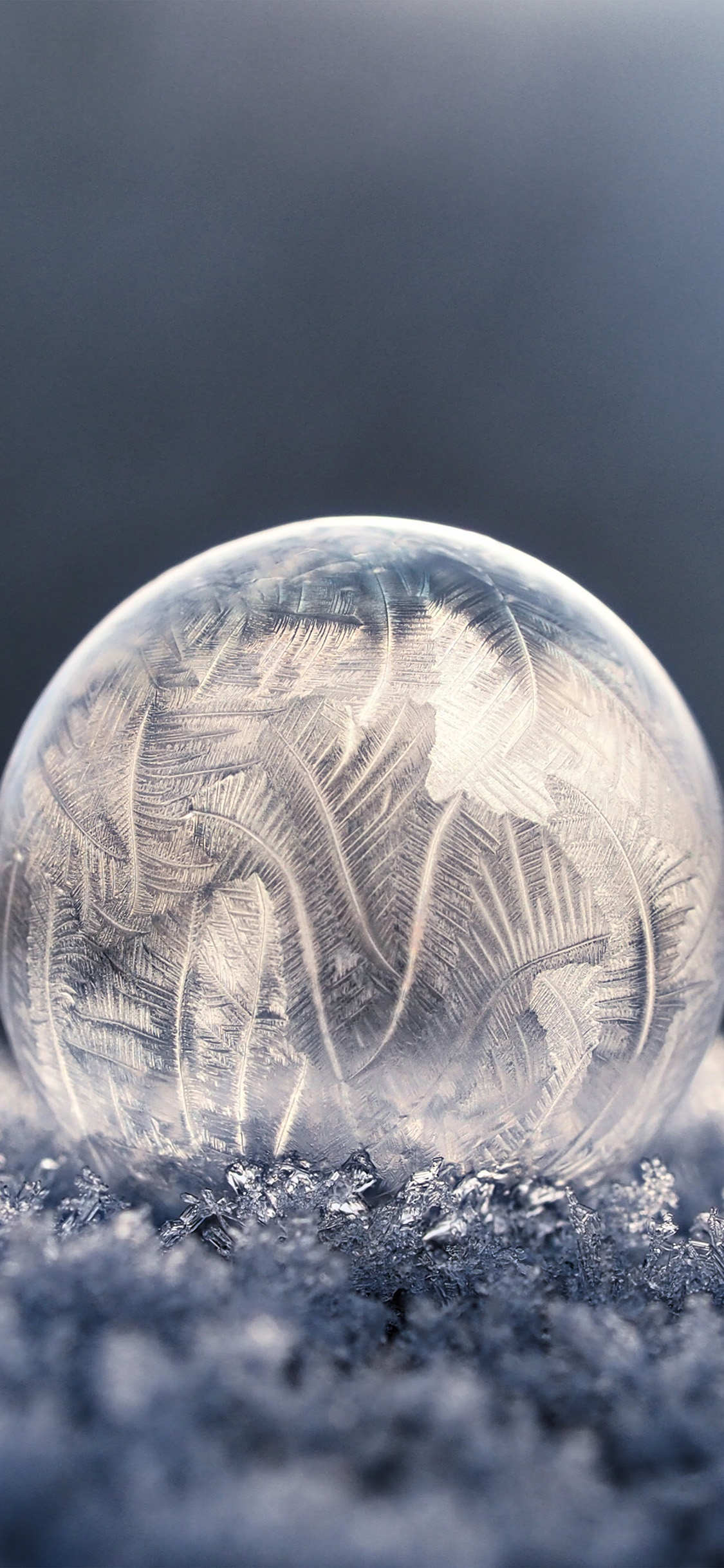 自然壁紙イメージ氷 最初のiphoneの壁紙 1125x2436 Wallpapertip